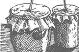 Carnaval met de rommelpot